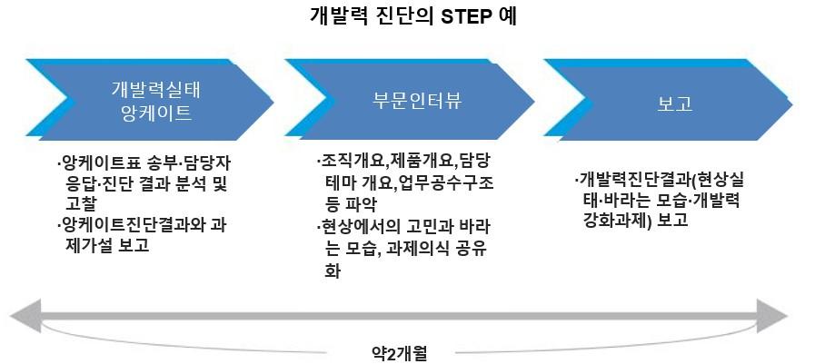 개발력 진단 스텝 예